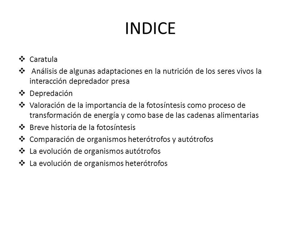 INDICE Caratula. Análisis de algunas adaptaciones en la nutrición de los seres vivos la interacción depredador presa.