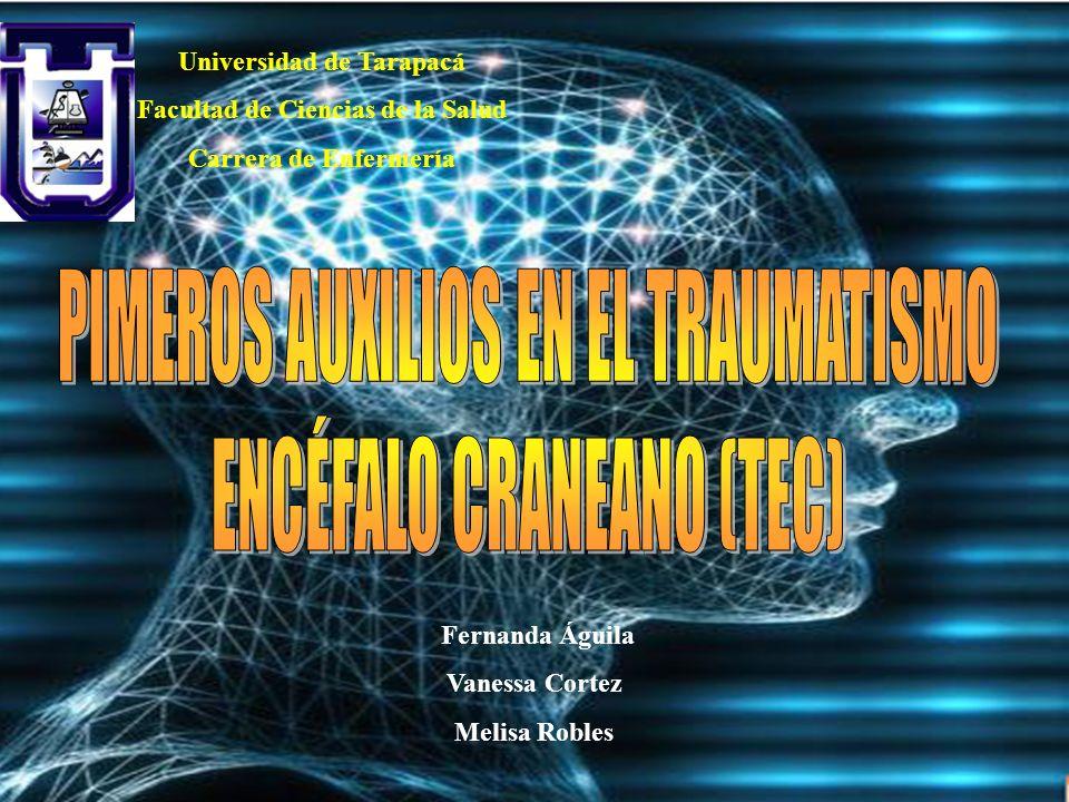 Universidad de Tarapacá Facultad de Ciencias de la Salud