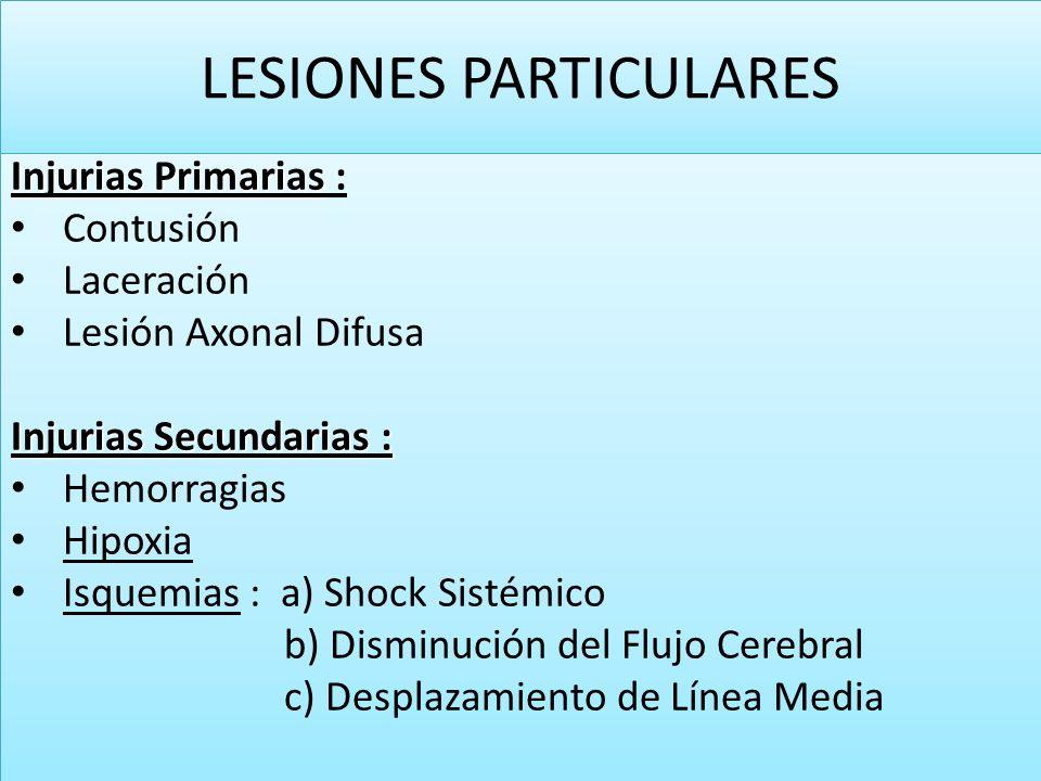 LESIONES PARTICULARES