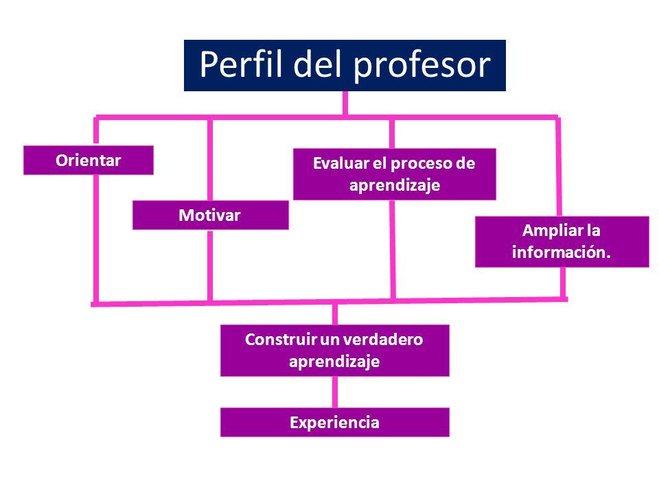 Perfil del profesor Orientar Evaluar el proceso de aprendizaje Motivar