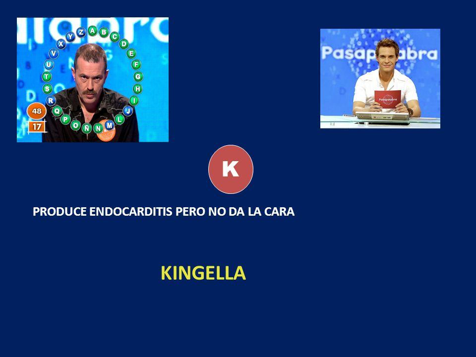 K PRODUCE ENDOCARDITIS PERO NO DA LA CARA KINGELLA