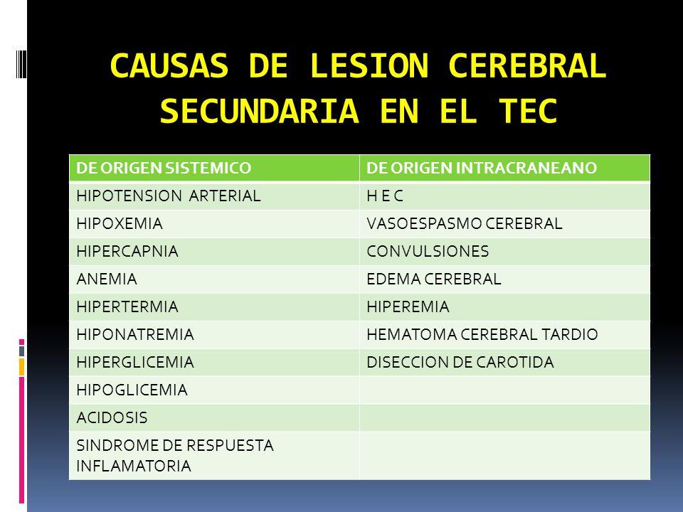 CAUSAS DE LESION CEREBRAL SECUNDARIA EN EL TEC