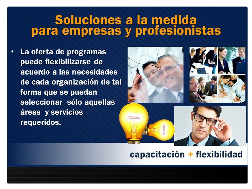 para empresas y profesionistas