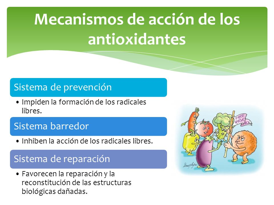 Mecanismos de acción de los antioxidantes