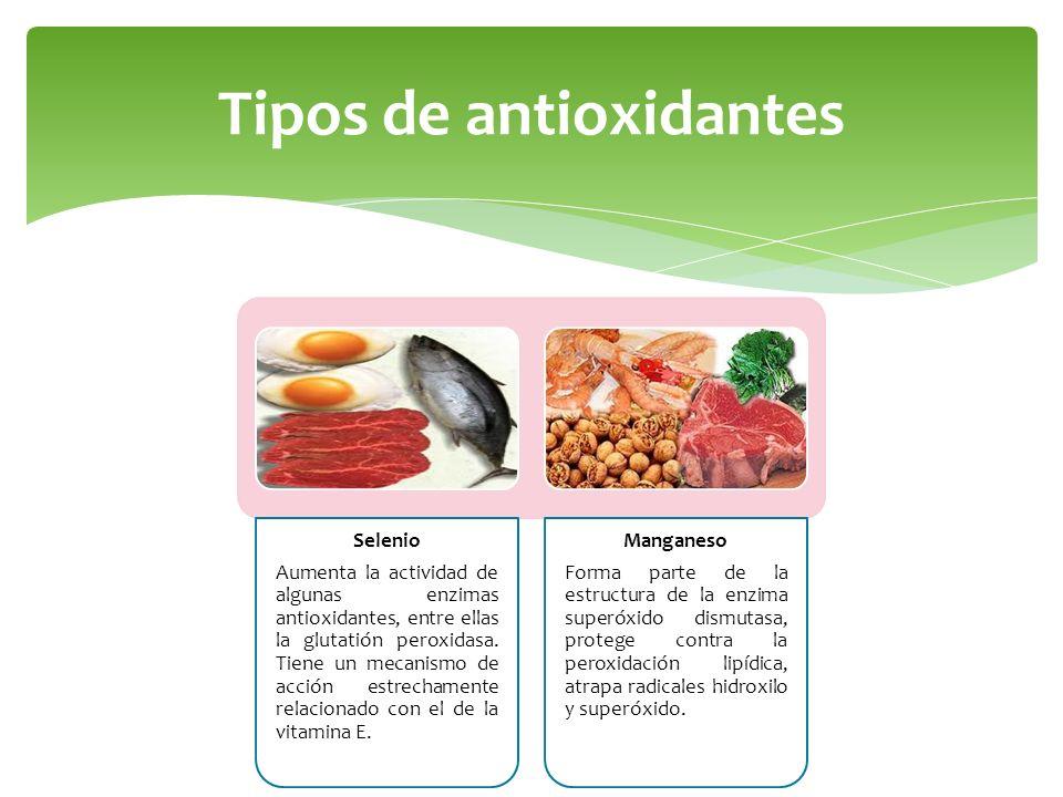 Tipos de antioxidantes