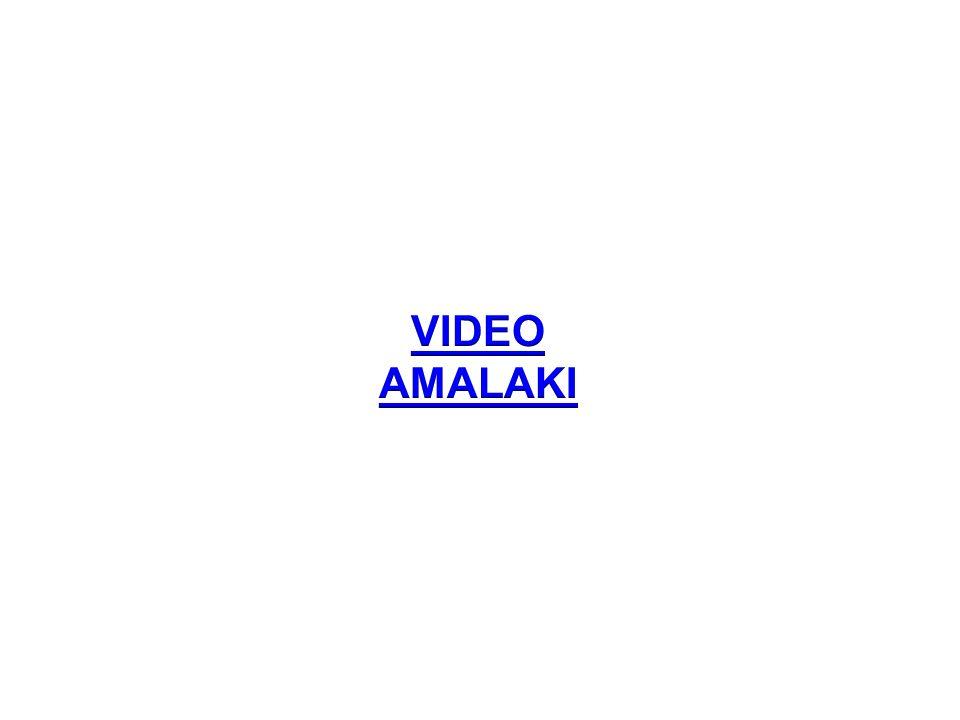 VIDEO AMALAKI