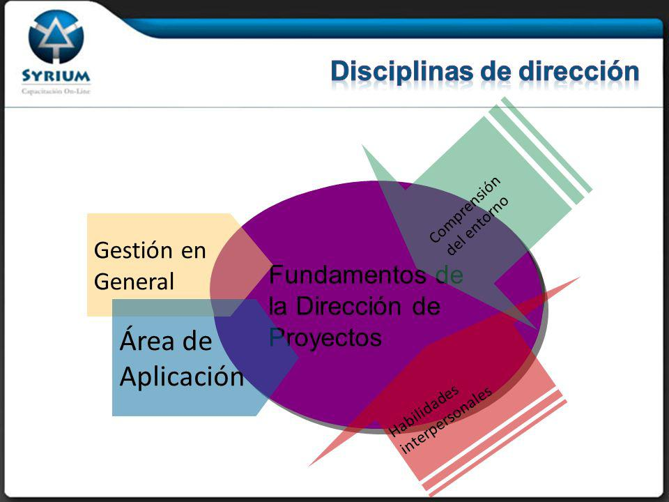 Disciplinas de dirección