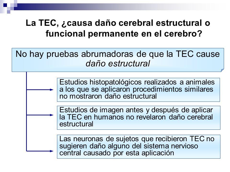 No hay pruebas abrumadoras de que la TEC cause daño estructural