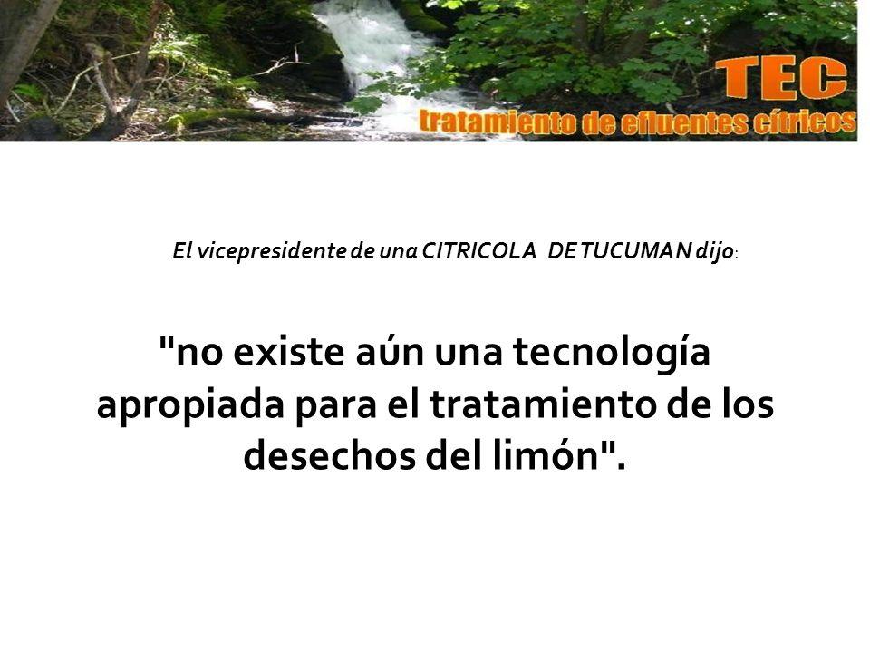 El vicepresidente de una CITRICOLA DE TUCUMAN dijo:
