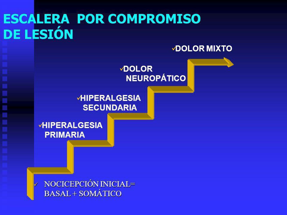 ESCALERA POR COMPROMISO DE LESIÓN