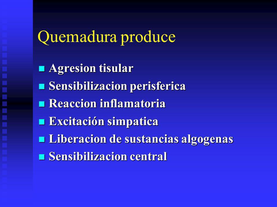Quemadura produce Agresion tisular Sensibilizacion perisferica
