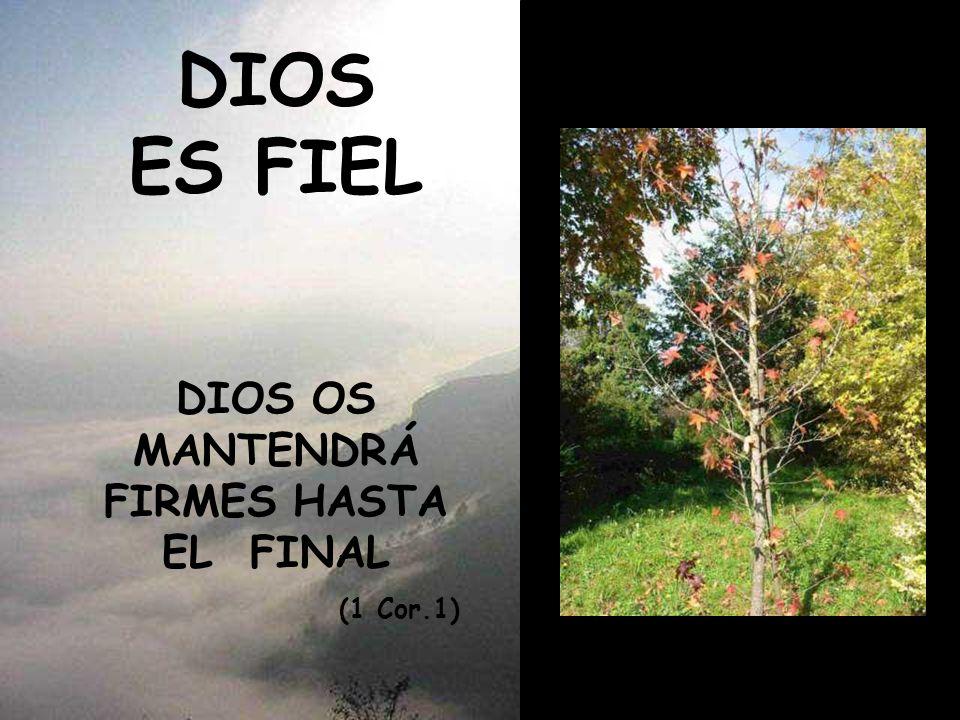 DIOS OS MANTENDRÁ FIRMES HASTA EL FINAL (1 Cor.1)