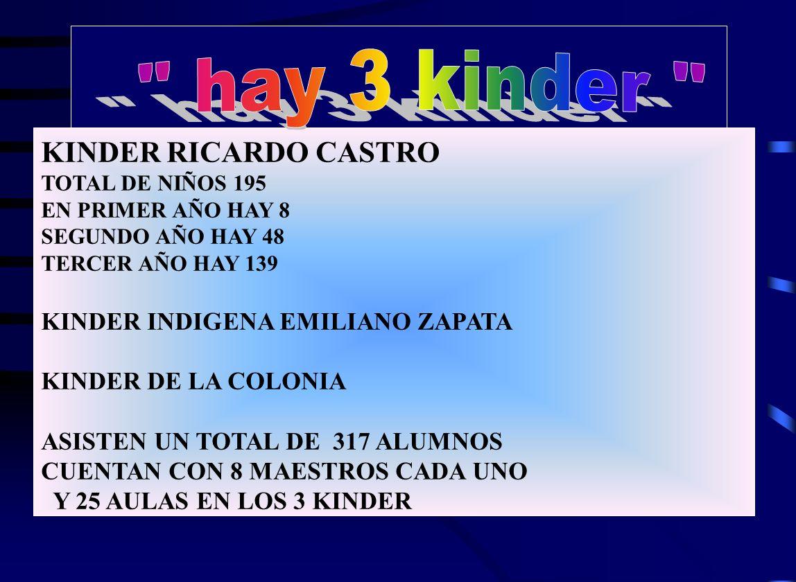 hay 3 kinder KINDER RICARDO CASTRO KINDER INDIGENA EMILIANO ZAPATA