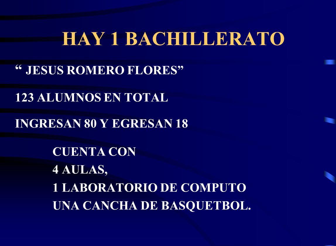 HAY 1 BACHILLERATO JESUS ROMERO FLORES 123 ALUMNOS EN TOTAL