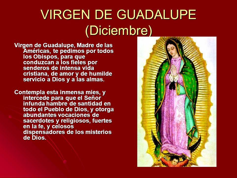 VIRGEN DE GUADALUPE (Diciembre)