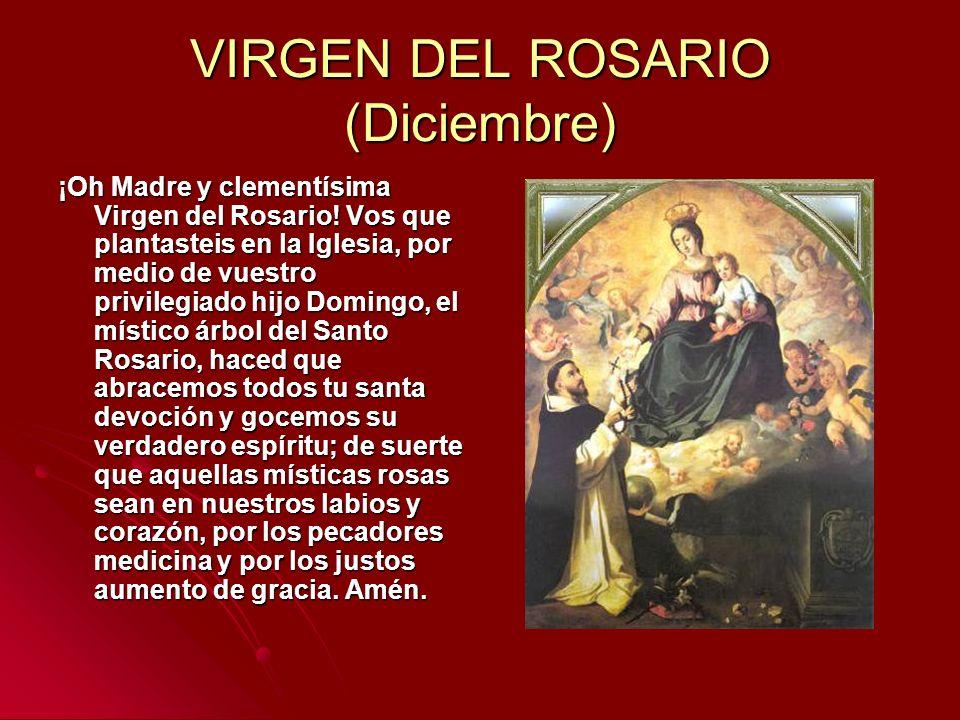 VIRGEN DEL ROSARIO (Diciembre)