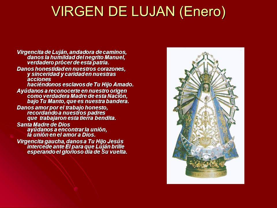 VIRGEN DE LUJAN (Enero)
