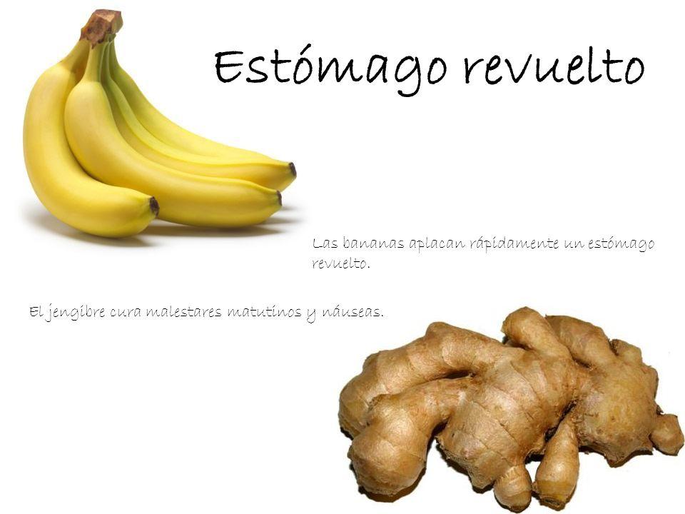 Estómago revuelto Las bananas aplacan rápidamente un estómago revuelto.