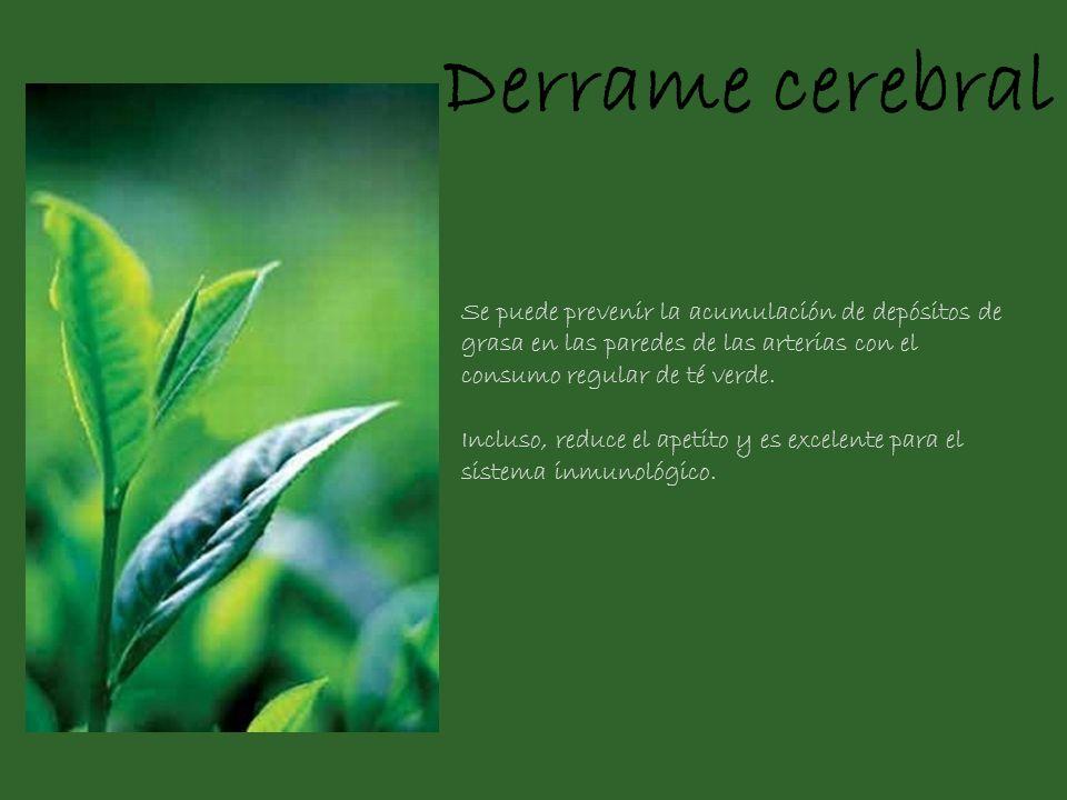 Derrame cerebral Se puede prevenir la acumulación de depósitos de grasa en las paredes de las arterias con el consumo regular de té verde.