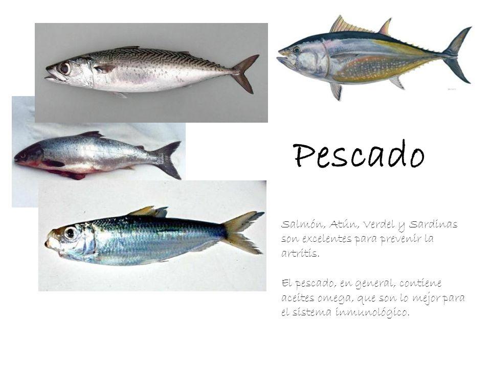 Pescado Salmón, Atún, Verdel y Sardinas son excelentes para prevenir la artritis.