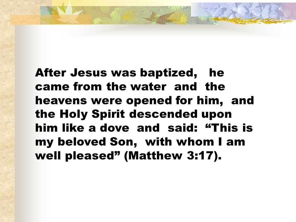 After Jesus was baptized, he came from the water and the heavens were opened for him, and the Holy Spirit descended upon him like a dove and said: This is my beloved Son, with whom I am well pleased (Matthew 3:17).