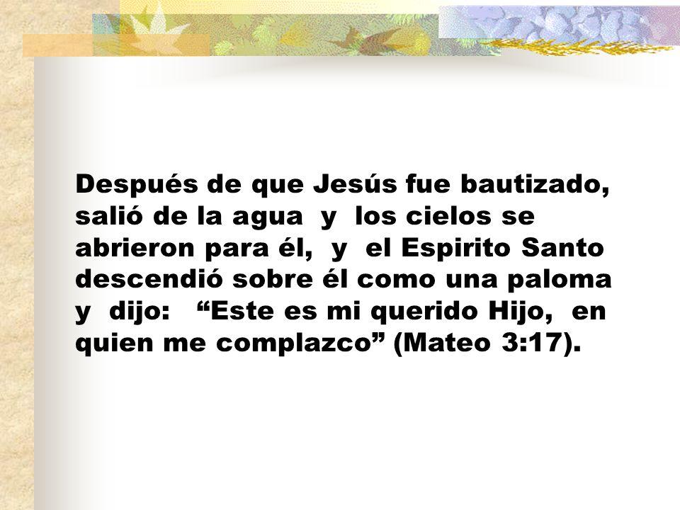 Después de que Jesús fue bautizado, salió de la agua y los cielos se abrieron para él, y el Espirito Santo descendió sobre él como una paloma y dijo: Este es mi querido Hijo, en quien me complazco (Mateo 3:17).