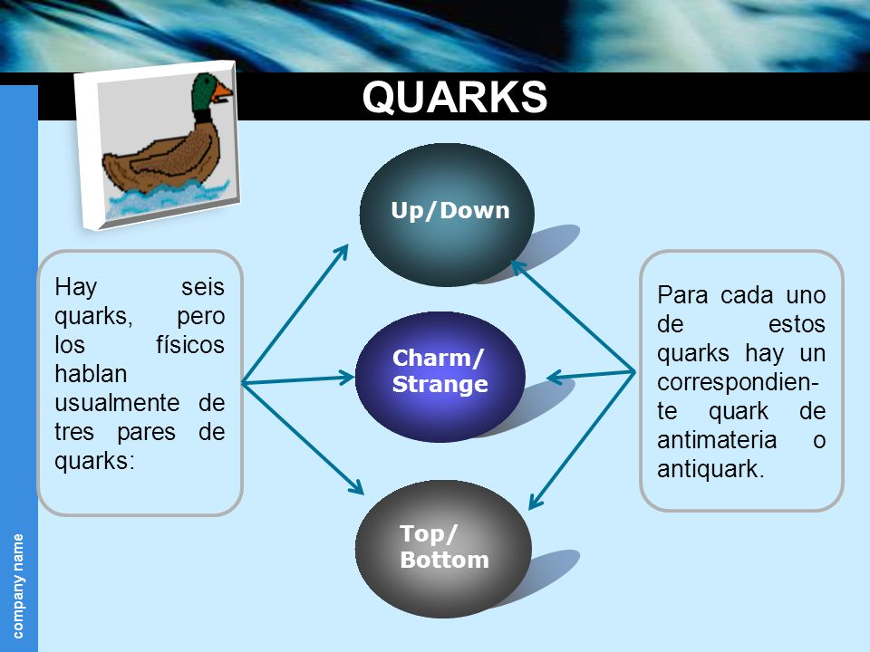 QUARKS Up/Down. Top/ Bottom. Charm/ Strange. Hay seis quarks, pero los físicos hablan usualmente de tres pares de quarks: