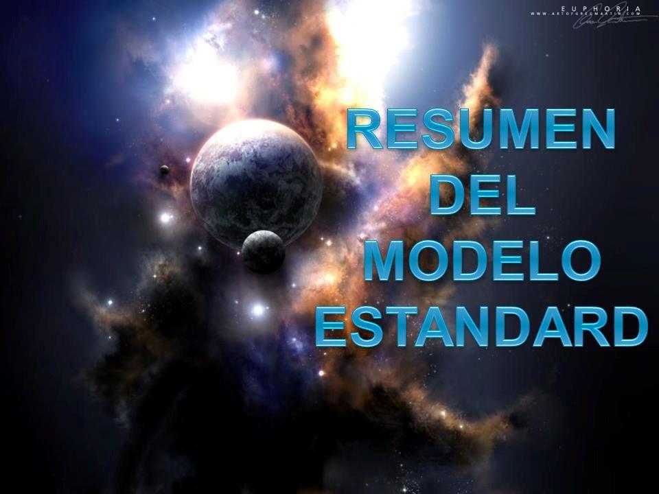 RESUMEN DEL MODELO ESTANDARD