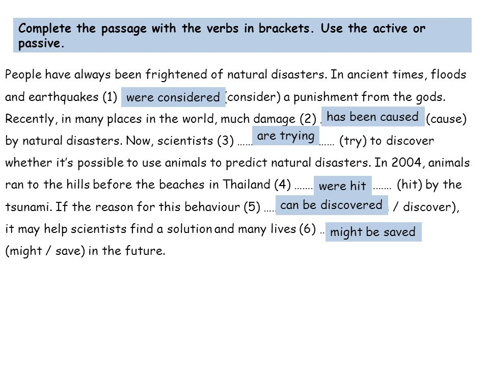 Complete the passage with the verbs in brackets