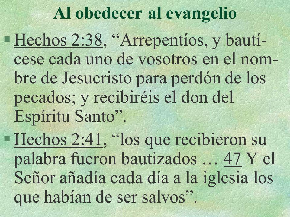 Al obedecer al evangelio