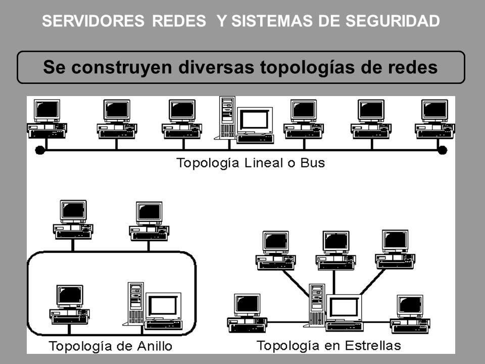 Se construyen diversas topologías de redes