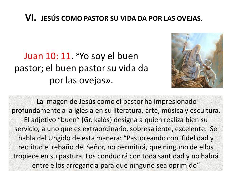 VI. JESÚS COMO PASTOR SU VIDA DA POR LAS OVEJAS.