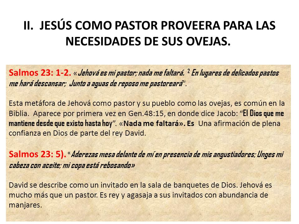 II. JESÚS COMO PASTOR PROVEERA PARA LAS NECESIDADES DE SUS OVEJAS.