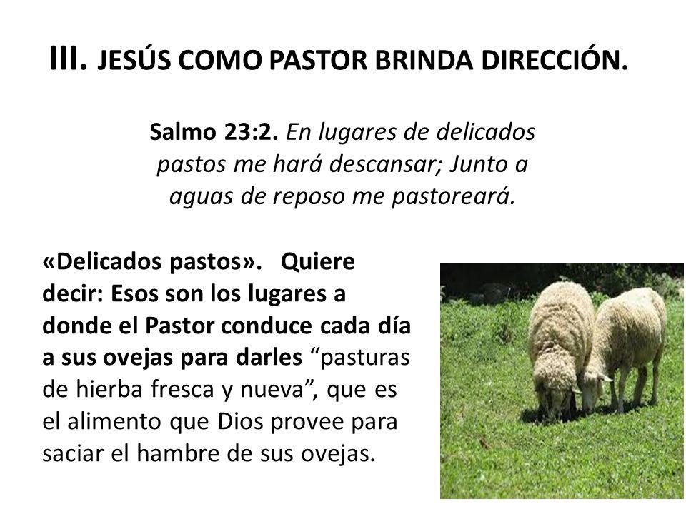 III. JESÚS COMO PASTOR BRINDA DIRECCIÓN.
