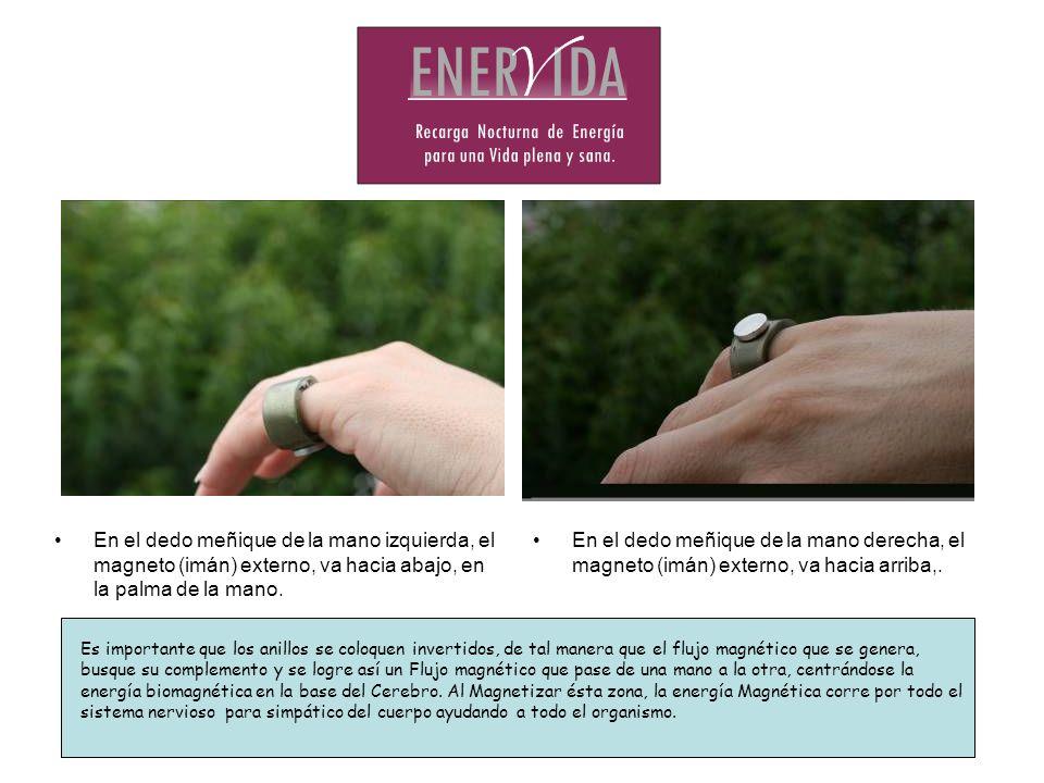 En el dedo meñique de la mano izquierda, el magneto (imán) externo, va hacia abajo, en la palma de la mano.