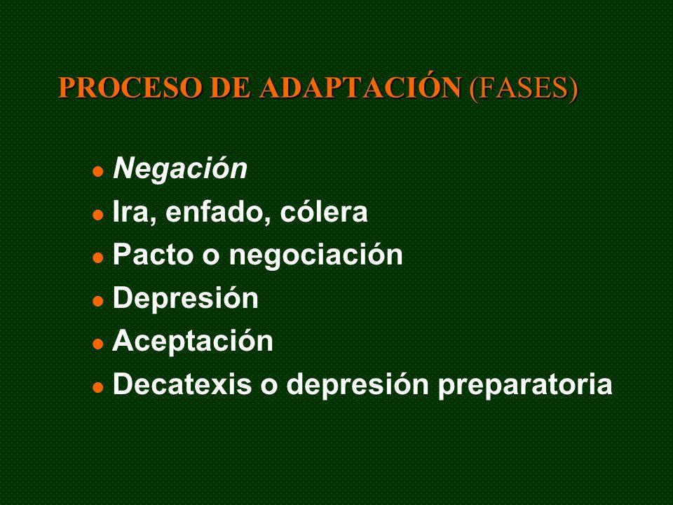 PROCESO DE ADAPTACIÓN (FASES)