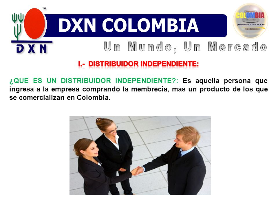 I.- Distribuidor Independiente: