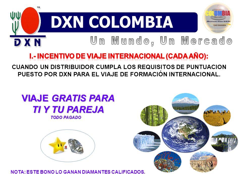 I.- Incentivo de viaje internacional (cada año):