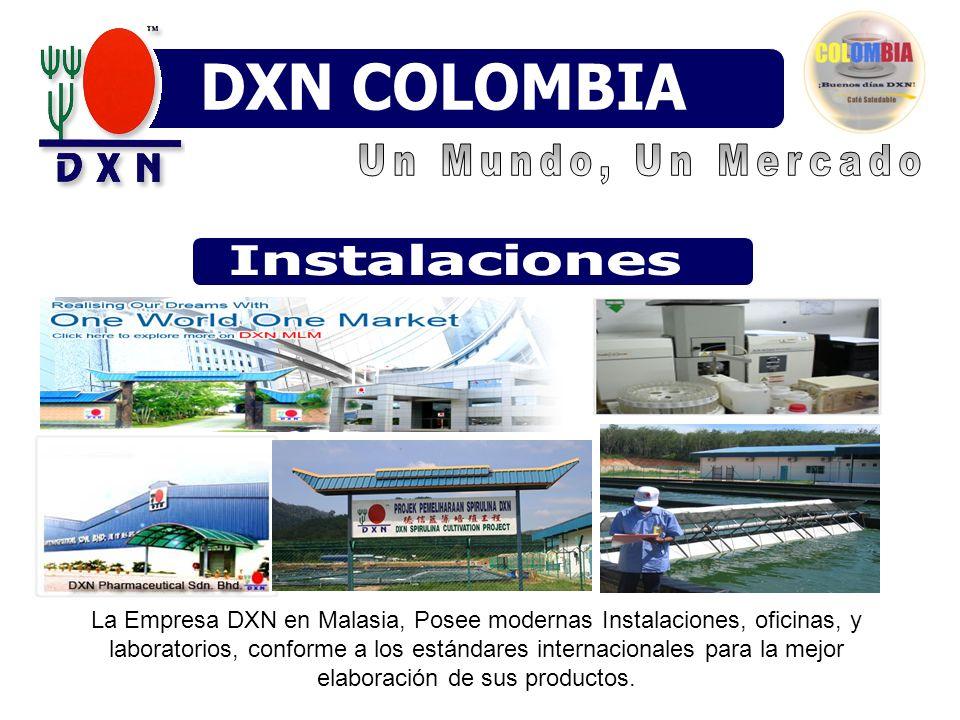 DXN COLOMBIA DXN MÉXICO DXN VENEZUELA DXN Venezuela Instalaciones