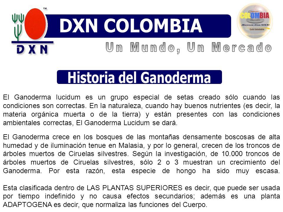 Historia del Ganoderma