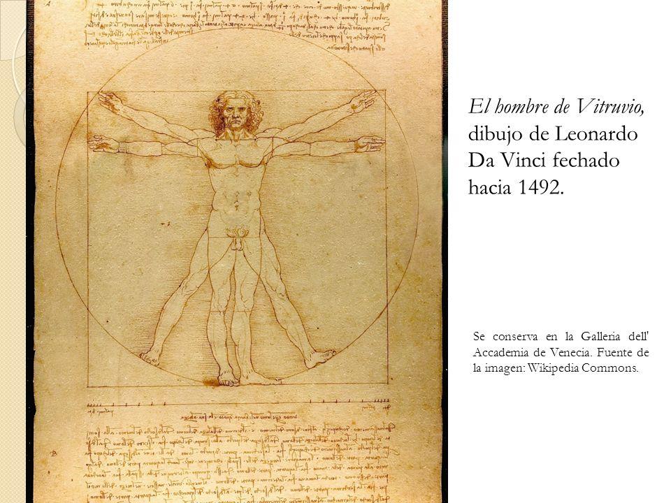 El hombre de Vitruvio, dibujo de Leonardo Da Vinci fechado hacia 1492.