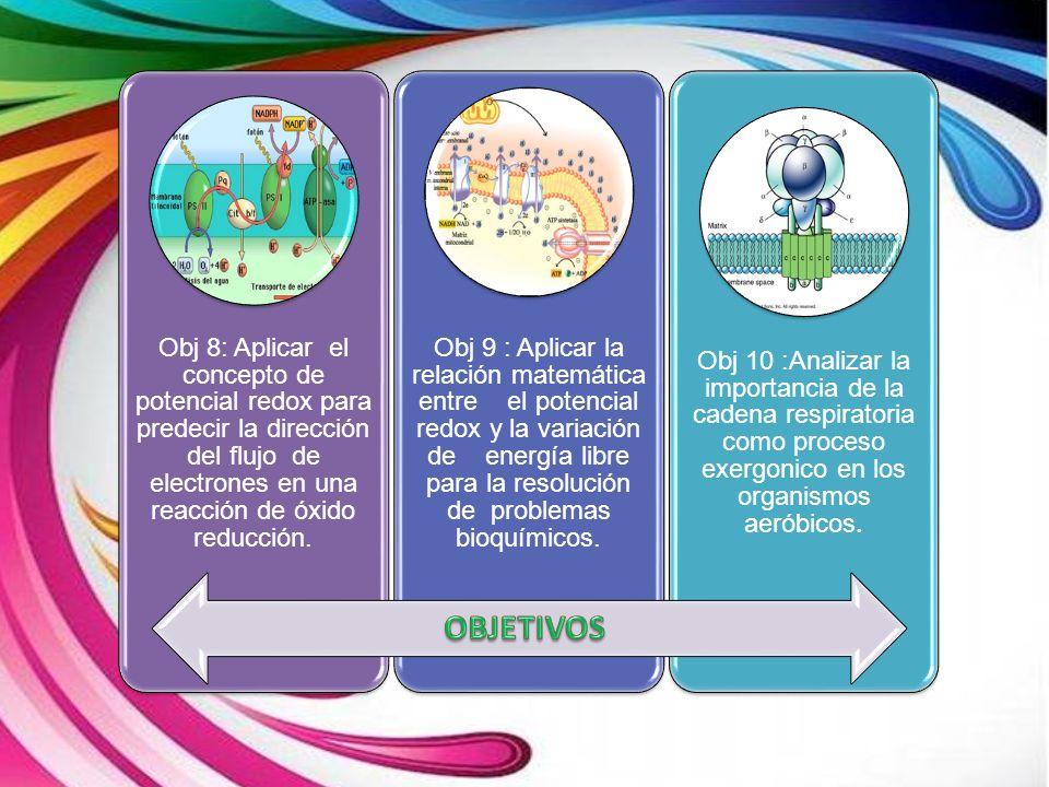 Obj 8: Aplicar el concepto de potencial redox para predecir la dirección del flujo de electrones en una reacción de óxido reducción.