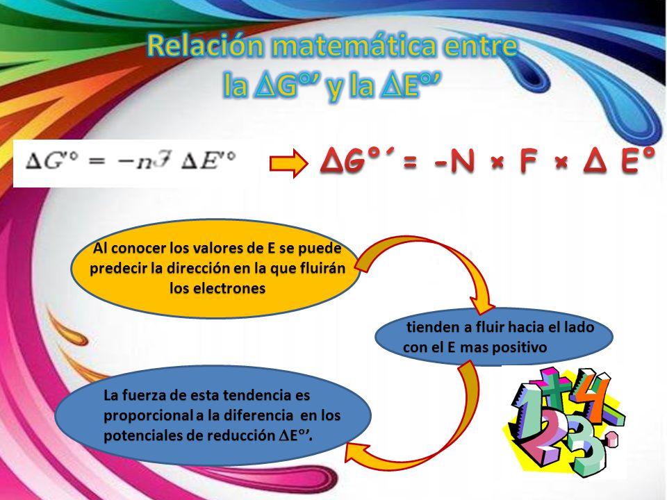 Relación matemática entre la DG°' y la DE°'