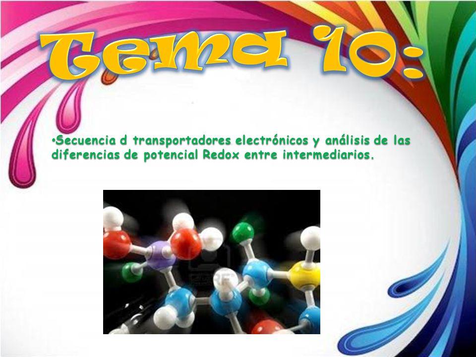 Tema 10: Secuencia d transportadores electrónicos y análisis de las diferencias de potencial Redox entre intermediarios.