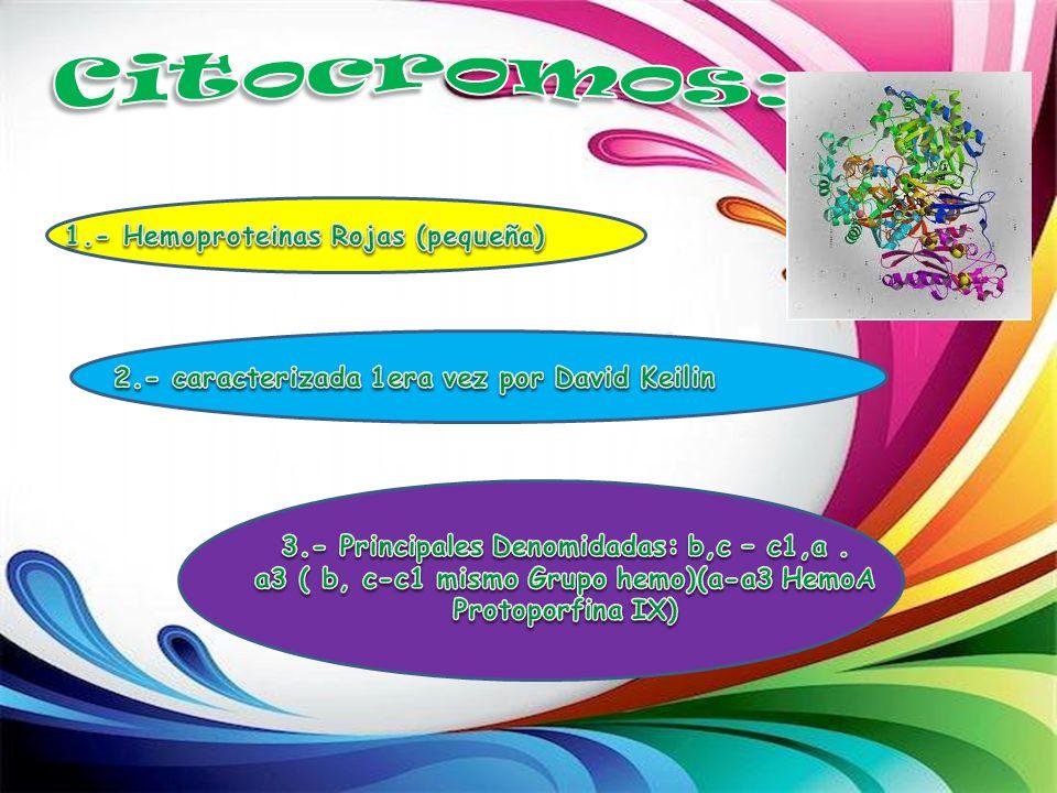 Citocromos: 1.- Hemoproteinas Rojas (pequeña)