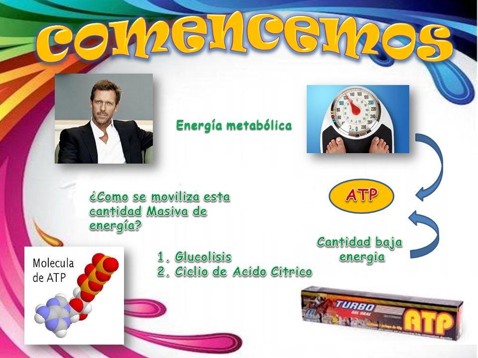 comencemos ATP Energía metabólica