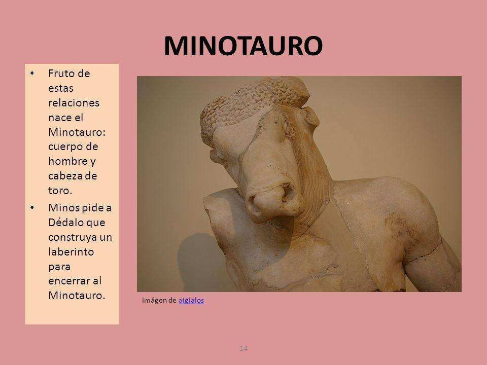 MINOTAURO Fruto de estas relaciones nace el Minotauro: cuerpo de hombre y cabeza de toro.