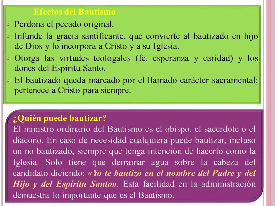 Efectos del Bautismo Perdona el pecado original.