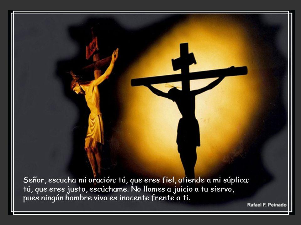 Señor, escucha mi oración; tú, que eres fiel, atiende a mi súplica; tú, que eres justo, escúchame.