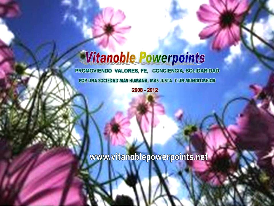 Vita Noble Powerpoints